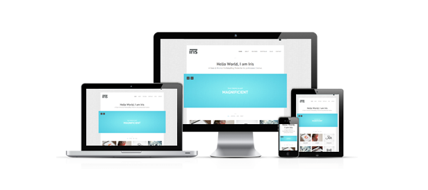 Iris - Clean / Responsive / Ajax / WordPress
