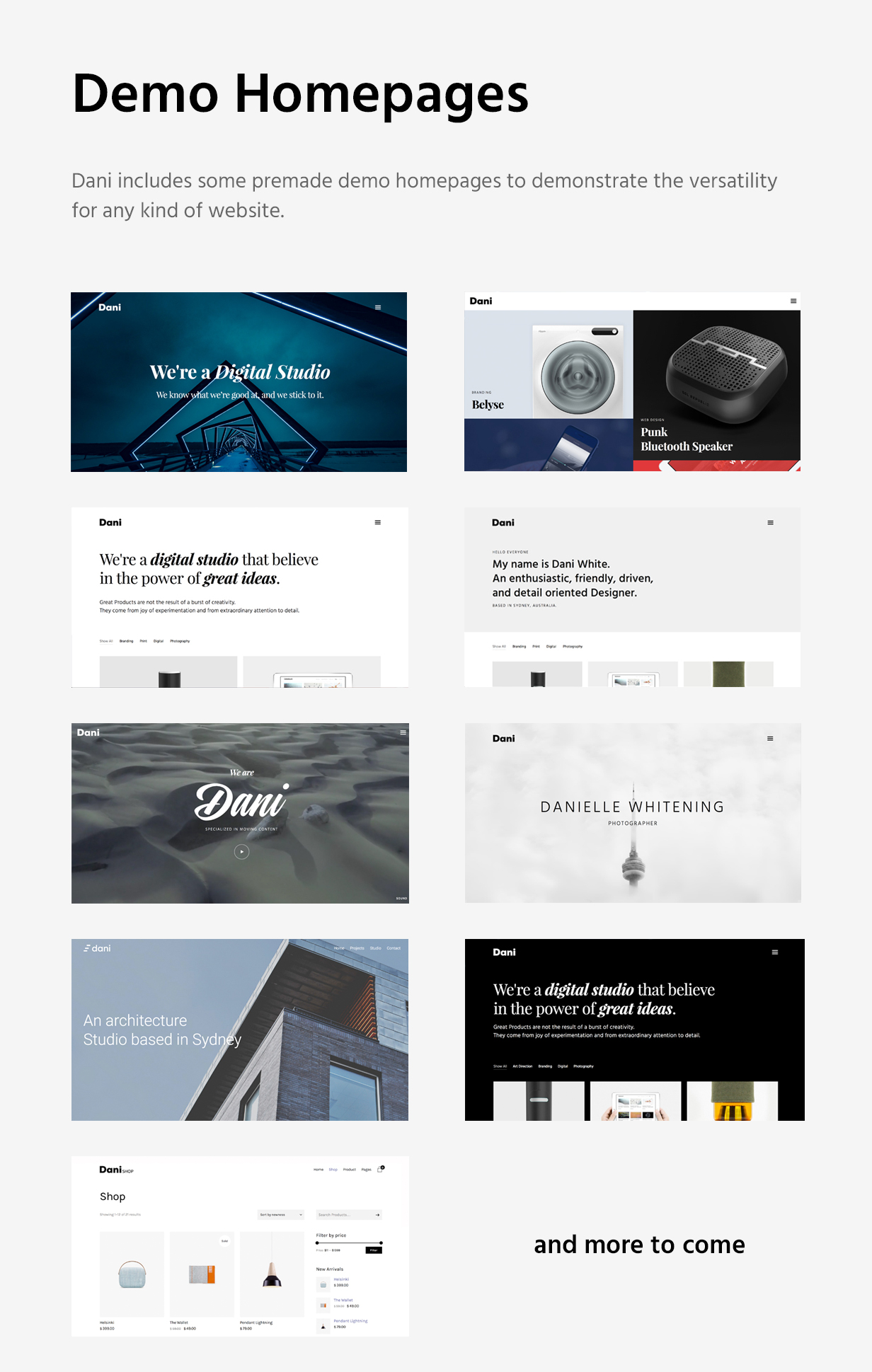 Dani - A Storming Portfolio & Shop WordPress Theme - 9